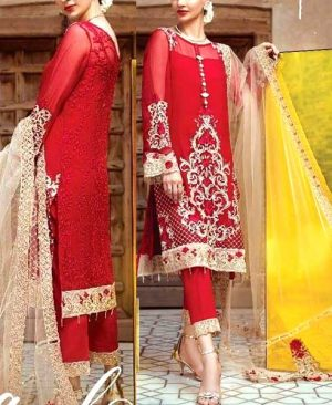 Chiffon Dress Embroidered With Four Side Borders Net Dupatta DM SER 517.jpg