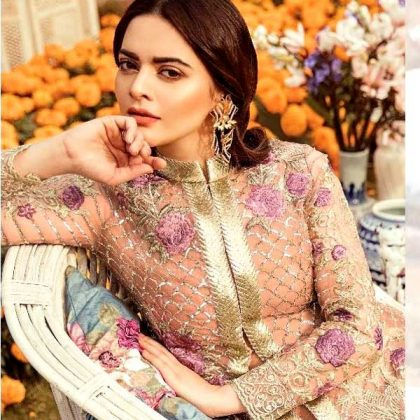Net Embroidered Suit With Net Dupatta Full Embroidery Dress DM IMRZ 587 1.jpg